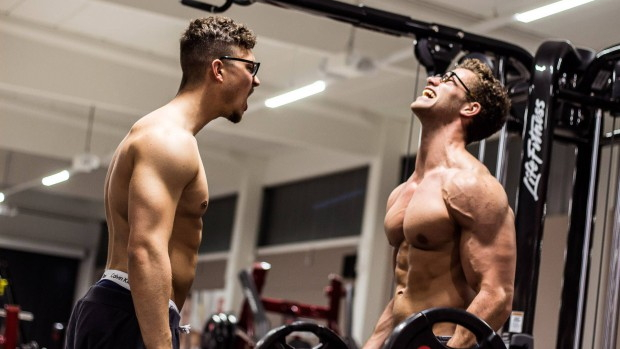max gains legal steroids