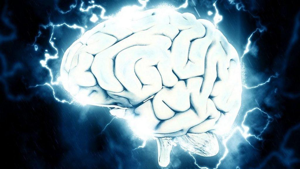 brain supplement reviews