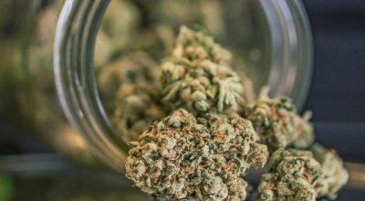 Marijuana-Dispensary-Laws